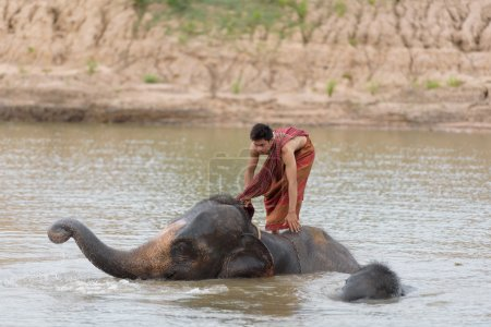 Photo for Big elephant and baby bathing in the river with yong man riding on it's back - Royalty Free Image