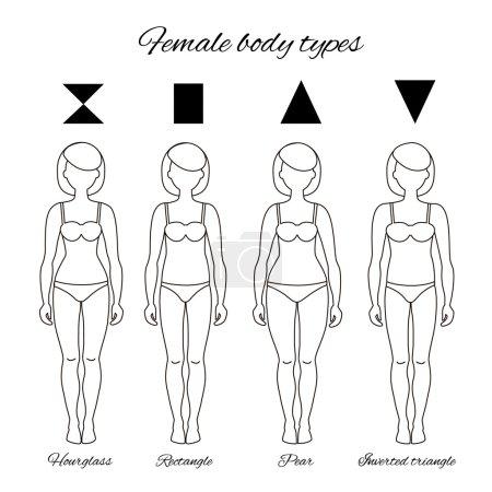 Types of body
