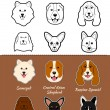 Постер, плакат: Russian breed of dogs