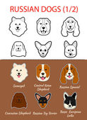 Russian breed of dogs