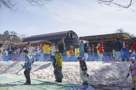 Tourists Lining up for skiing