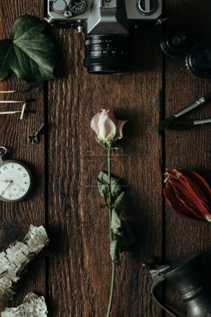 Dry rose on vintage wooden desk. Flat lay