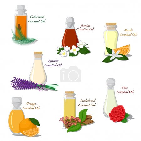 Illustration for Vector set of bottles filled with essential oils - Royalty Free Image