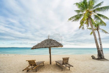 Two beach chairs, umbrella and Coconut palm