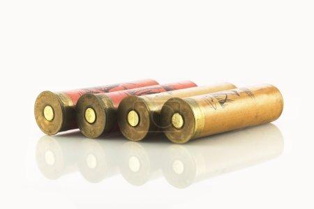 Coquilles de fusil de chasse sur blanc