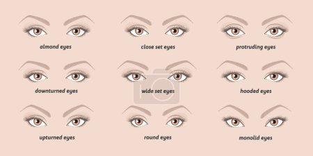 Set of vector eyes shapes.  Set of illustrations w...