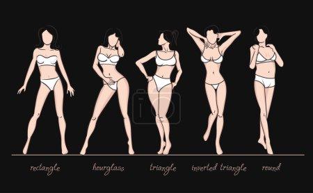 Women body shapes.