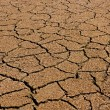 Dry cracked earth background, clay desert texture...