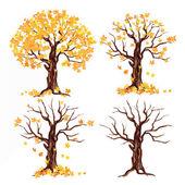 Malovaný podzimní strom sada