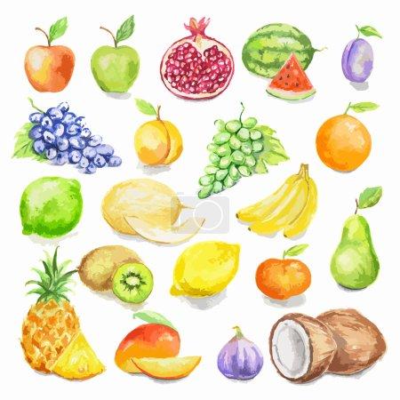 Watercolor fruit set.