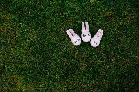 Easter bunnies on a stub