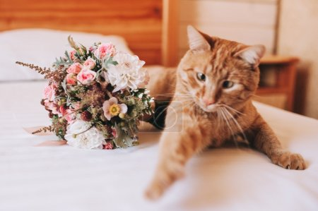 cat and wedding bouquet