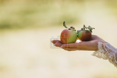 Hand of bride holding a green apples