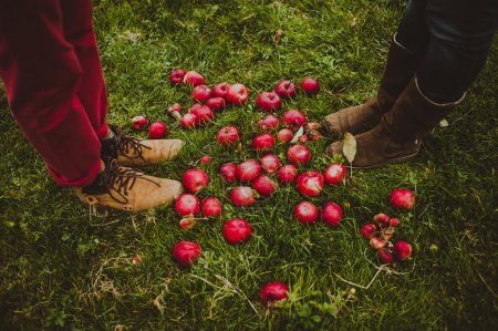 red apples and couples