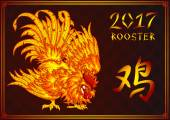 Fighting fiery rooster on black card