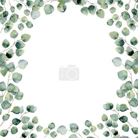Foto de Tarjeta marco floral verde acuarela con eucaliptos ronda deja. Frontera con ramas y hojas de eucalipto dólar de plata aislado sobre fondo blanco pintado a mano. Para el diseño o el fondo - Imagen libre de derechos