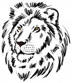 Brush hand draw lion illustration
