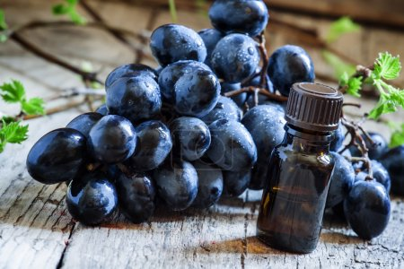 Grape seed oil in brown bottle, bunch of grapes
