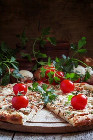 Pizza with chicken meat, tomotoes and mushrooms