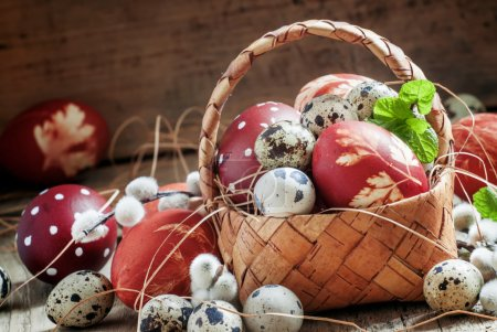 Photo for Painted eggs and speckled quail eggs in a wicker basket with mint leaves, willow twigs and straws on the old wooden table, selective focus - Royalty Free Image