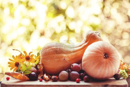 Autumn harvest of pumpkins and fruits