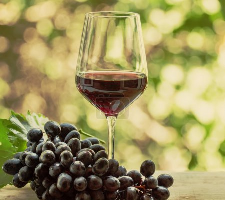 Red wine in a glass and fresh grapes