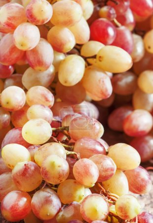Pink grapes on old wooden table