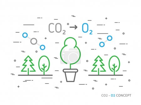 CO2 (carbon dioxide) to O2 (oxygen)