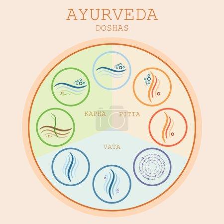 Illustration for Ayurveda diagram vector illustration. Doshas vata, pitta, kapha. Ayurvedic body types. Ayurvedic infographic. Healthy lifestyle. - Royalty Free Image