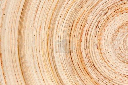 Photo pour Abstrait comme tranche de bois - image libre de droit