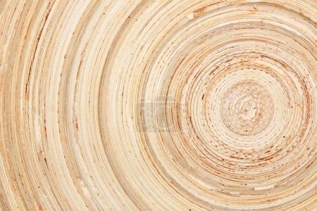 timber circles texture