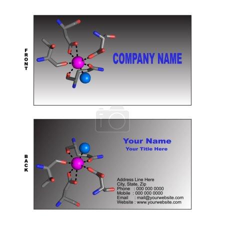 Illustration pour Les modèles de cartes de visite sur le thème de la biotechnologie avec le site de liaison du calcium de la molécule de protéine. Illustration montrant l'ion calcium en tant que sphère magenta, la molécule d'eau impliquée dans la coordination de l'ion calcium en tant que sphère bleue ainsi - image libre de droit