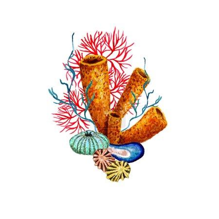 Watercolor Sponge, Coral