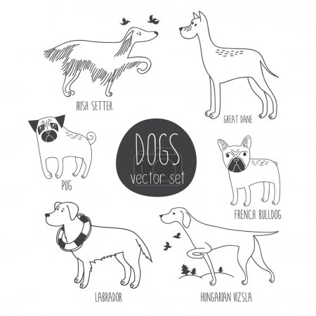 Vector set with cute cartoon dos of different bree...