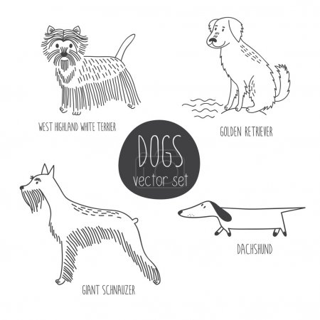 cartoon dos of different breeds