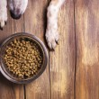 Bowl of dry kibble dog food and dogs paws and neb ...
