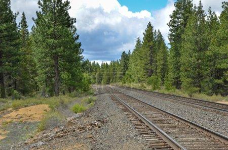 Railway tracks on a cloudy day