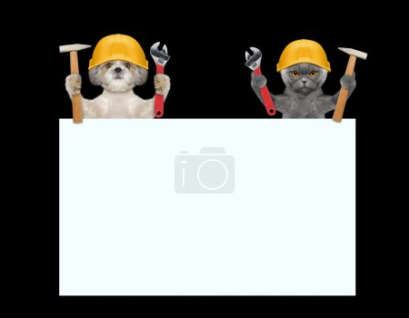 dogs and cat repairman holding tools in their paws
