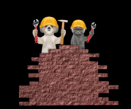dog and cat builders holding tools in their paws