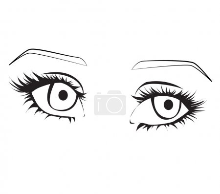 Female eyes outline.