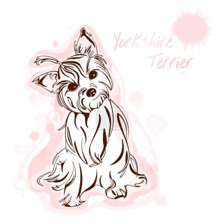 Yorkshire terrier watercolor