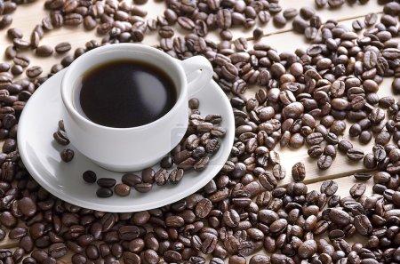 Photo pour Café. Tasse de café. Grains de café. Concept - image libre de droit
