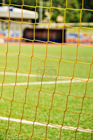 Stadium. Grass. Football field.  Sport and fitness.