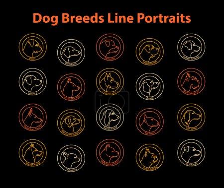 Dogs Line Portraits