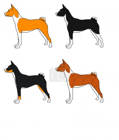 Vector set of dogs basenji breed, as well as the C...