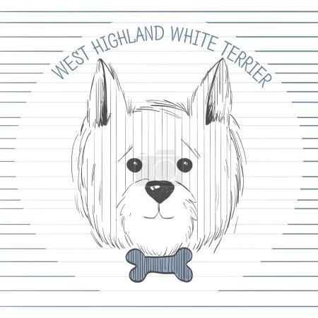 west highland white terrier scetch