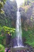 Vodopád v tmavě zelené a svěží údolí
