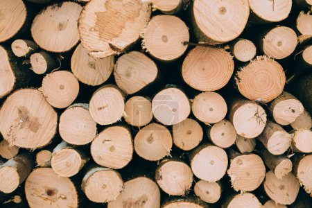 firewood logs in a pile
