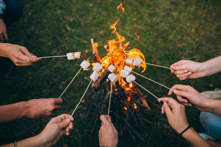 Sticks with marshmallows above campfire