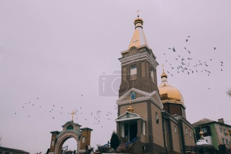 Pigeons flying over the church